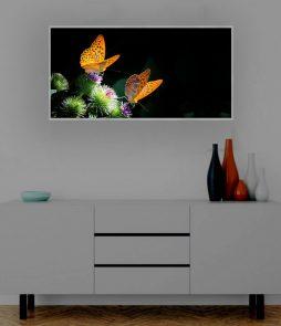 LED Bild Schmetterlinge
