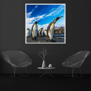 LED Bild Pinguine