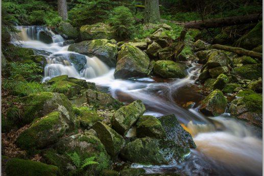 LED Bild Bach im Wald
