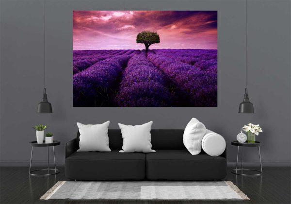 LED Wall Art Bild Lavendelfeld