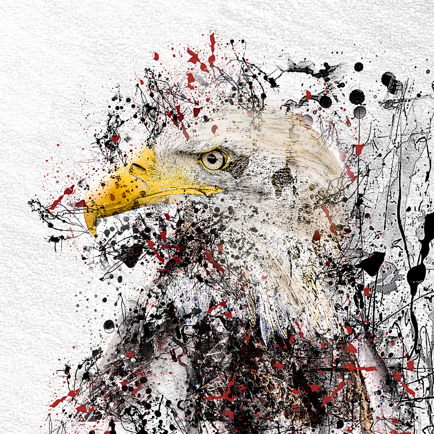 LED Bild Eagle Art