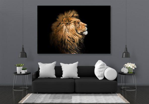 LED Bild Afrika